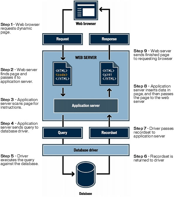 This image shows how the web server interacts with a database when a dynamic page is requested.